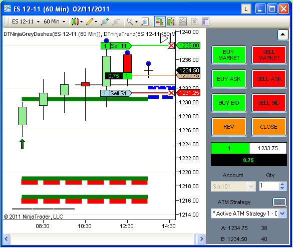 Ninjatrader forex account